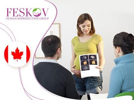 Maternità surrogata in Canada: una guida dettagliata per i futuri genitori - Centro di donazione e Maternità surrogata clinica del professor Feskov A.M.