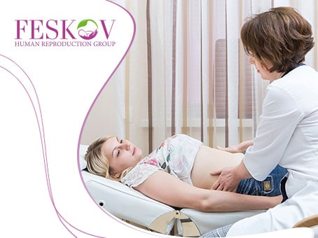 Cosa devi sapere su trasferimento degli embrioni - Centro di donazione e Maternità surrogata clinica del professor Feskov A.M.